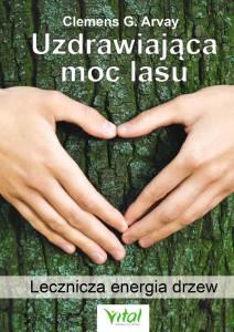 uzdrawiająca-moc-lasu